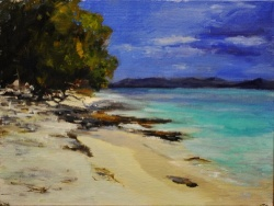 Virgin Islands *SOLD*